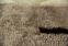 Ковровая дорожка на резиновой основе Классик 2