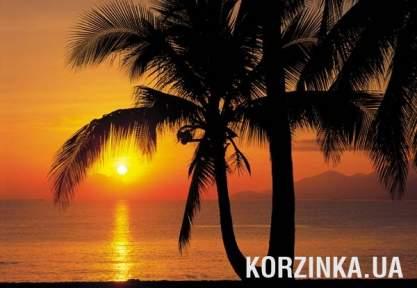 Фотообои Komar 4-255